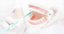 正しく歯を磨こう